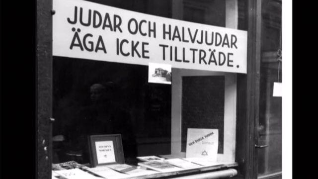 Ramp om historia : Nazismen i Sverige under andra världskriget