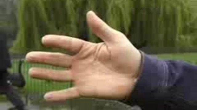 Kids English Zone : Head, arms, hands, legs, feet
