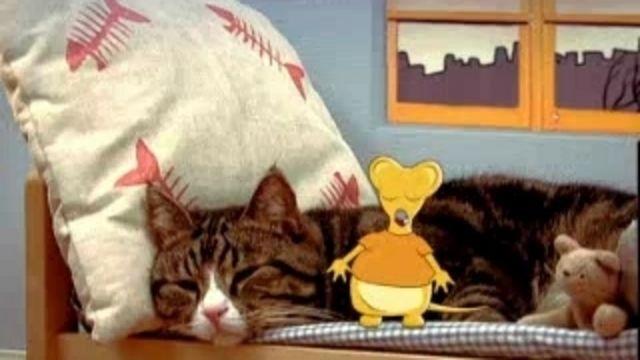 Katten, musen, tiotusen : Om två, hälften och dubbelt