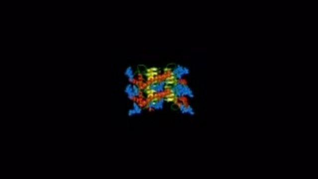 Vetenskap - Universum i provrör : Den gåtfulla prionen