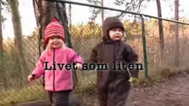 Barnet och orden - om språk i förskolan : Allra första språket