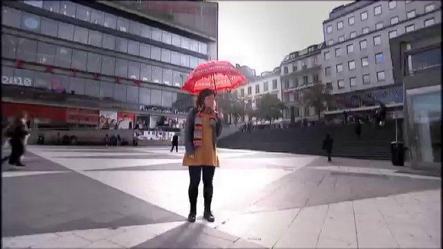 Hej litteraturen! : Den svenska poesin