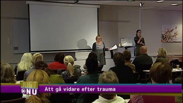 UR Samtiden - Våld, trauma och själens läkning : Att gå vidare efter trauma