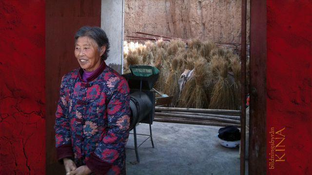 Bildningsbyrån - Kina : Växtvärk