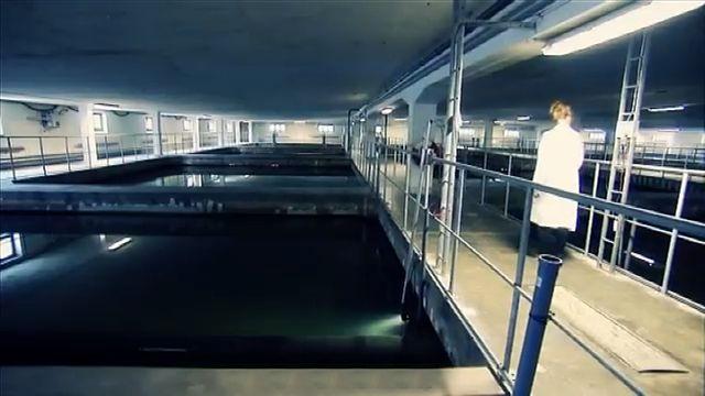 Fatta fakta : Vattenrening