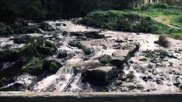 Fatta fakta : Vatten