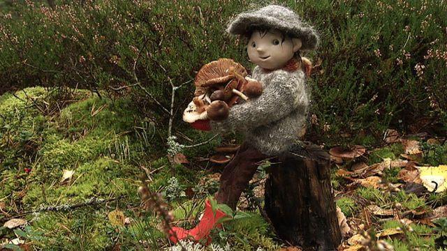 Skrutt samlar höst - finska : Svamp
