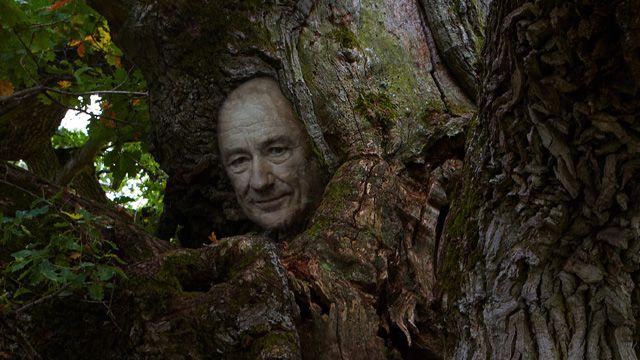 Tro och väsen : Skogsrået