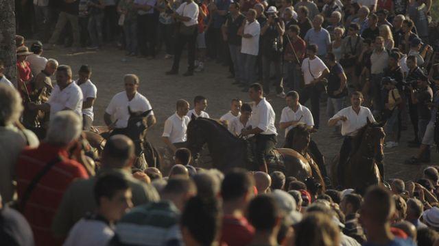 Mitt Sardinien : Hästkapplöpningen