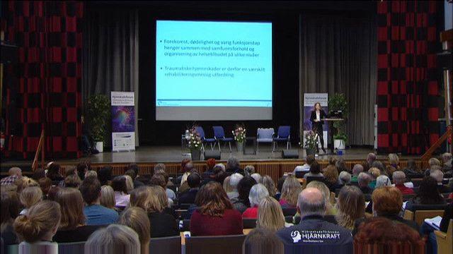 UR Samtiden - Hjärnskadeforum 2013 : Behov efter skadan