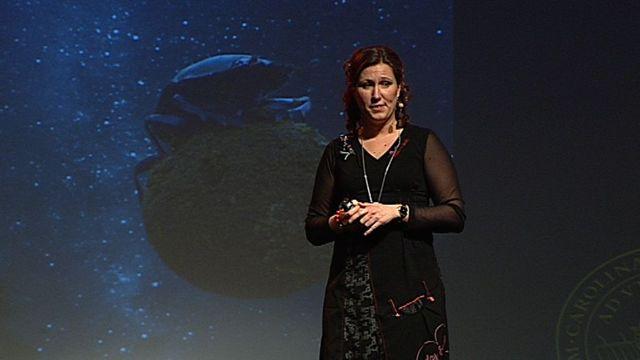 UR Samtiden - Forskar-Grand Prix 2012 : Biologiska kompasser