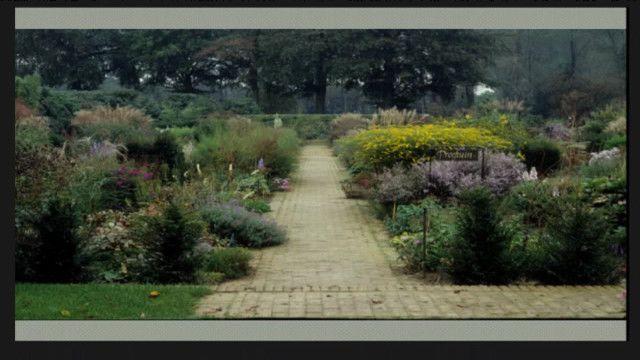 UR Samtiden - Perenner för park och trädgård : Gestaltning möter ekologi