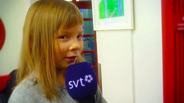 Drömyrket - samiska : Nyhetsreporter