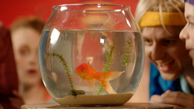 Livet i Bokstavslandet : F som i fiskar