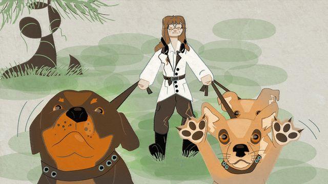 Moderna spökhistorier - meänkieli : Hundpensionatet