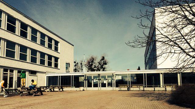Skolministeriet : Att välja väg inför valet