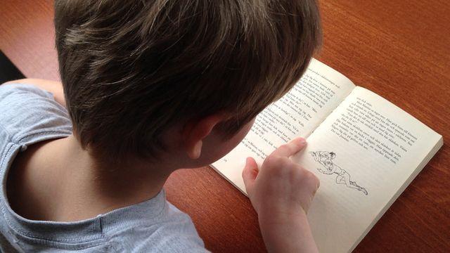 Skolministeriet : Dyslektiker utan hjälp