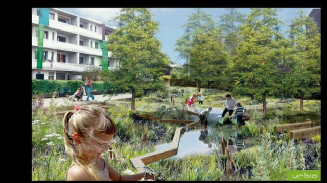 UR Samtiden - Odla i stan : Stadsodling för välbefinnande