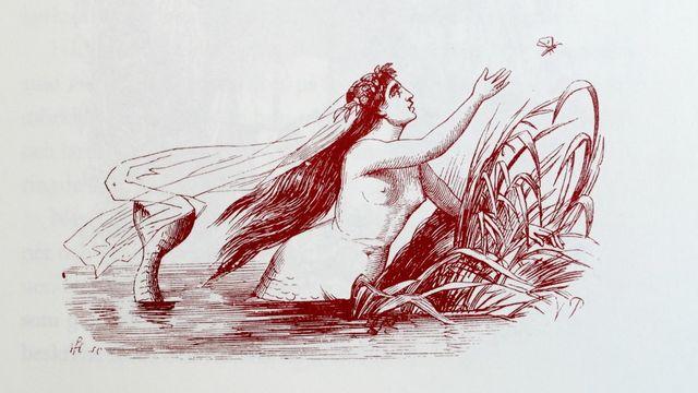 H.C. Andersen : Den lilla sjöjungfrun