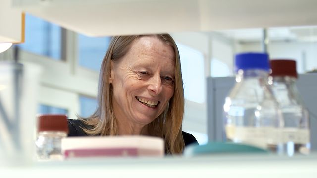 Forskare för framtiden : Kroppens egen vaccinationsfabrik