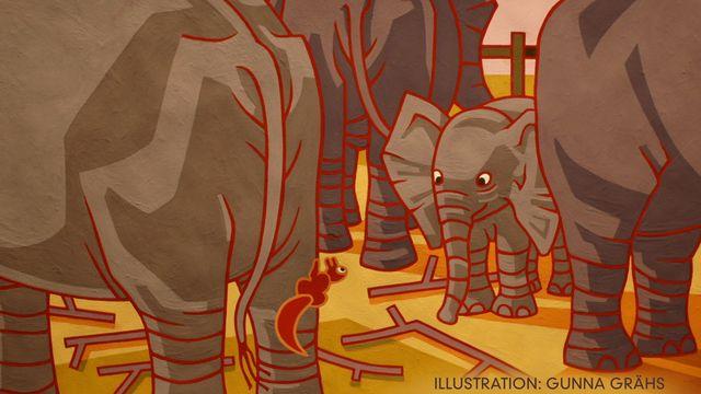 Tripp, Trapp, Träd : En liten elefant