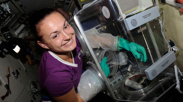 UR Samtiden - 100 astronauter på svensk jord : Första kvinnliga kosmonauten på rymdstationen