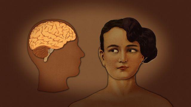 Din kropp - romani chib/arli : Hjärnan