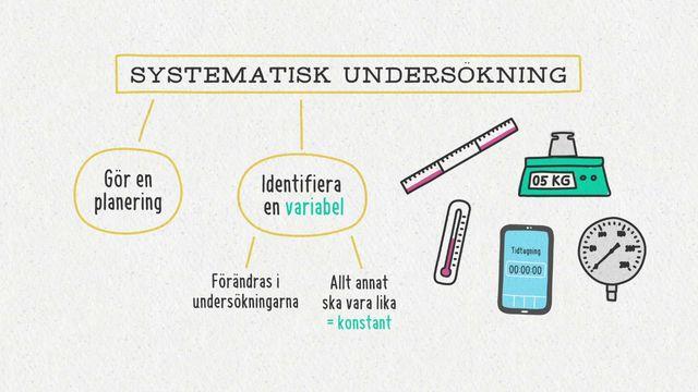 Förstå kunskapskraven : Frågeställningar för systematiska undersökningar