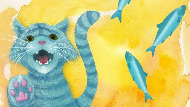Djurlåtar : Har ni sett vår katt?