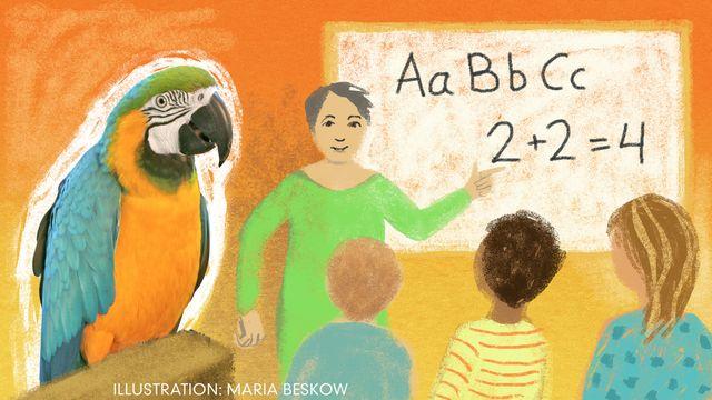 Vad ska vi göra idag? - svensk romani : Bengt och Bodil går i skolan