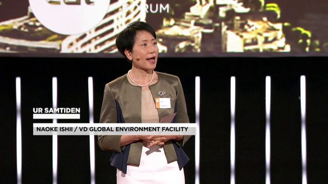 UR Samtiden - EAT 2016 : Staden är klimatboven