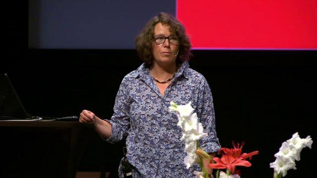 UR Samtiden - Släktforskardagarna 2016 : Släktforskning i norska källor
