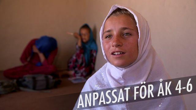Min skola mitt i kriget : Flickors rätt till skola