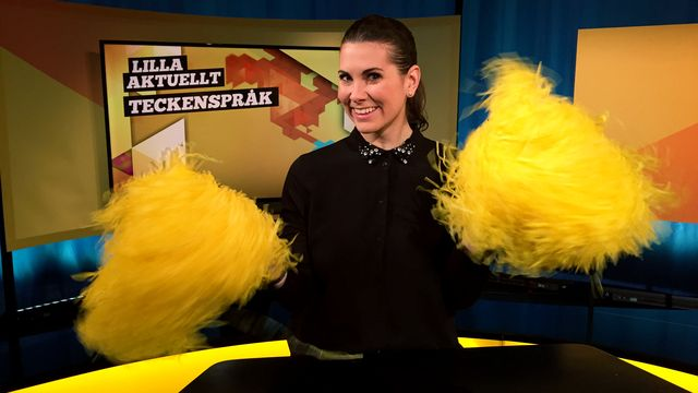 Lilla Aktuellt teckenspråk : 2017-03-17