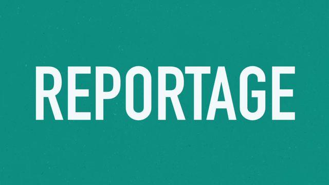 Orka plugga : Textgenrer - reportage