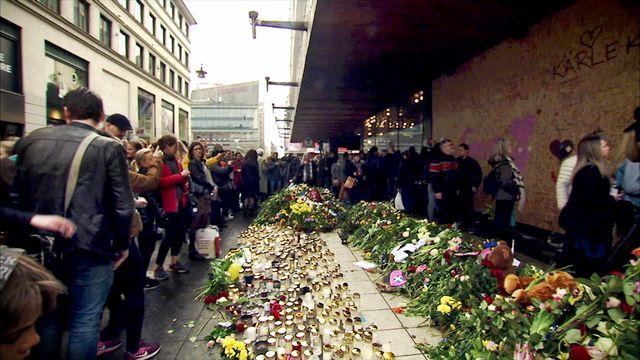 Moderland - fördjupning : Vem är terrorist?