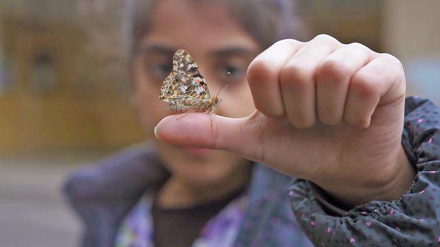 Från vardagssnack till skolspråk : Att stötta elevens lärande