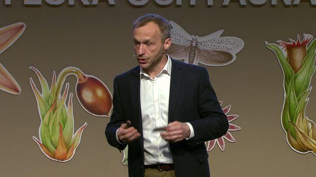 UR Samtiden - Flora- och faunavård 2017 : De finns i Artfakta