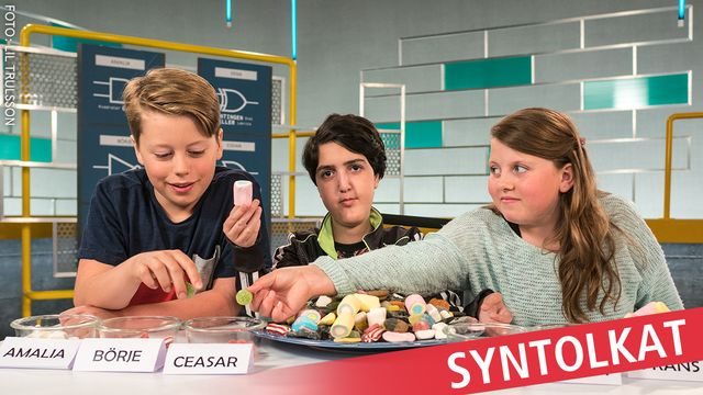 Programmera mera 2.0 - syntolkat : Mobilspel