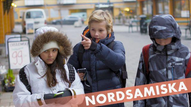 Berätta för mig - nordsamiska : Chatten