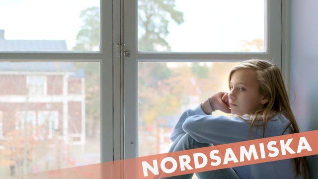 Berätta för mig - nordsamiska : Osynlig