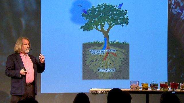 UR Samtiden - Sanning och konsekvens : UR Samtiden - Nytt liv för den odlade jorden