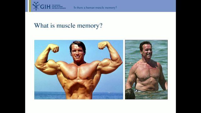 UR Samtiden - Hälsa och träning i framtiden : Muskelminne - från djurförsök till människa