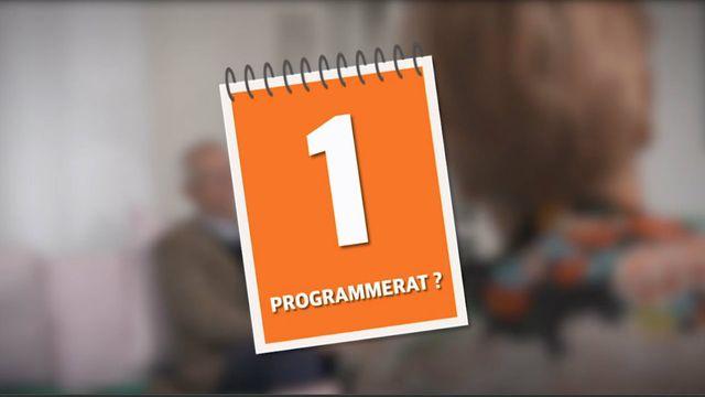 Programbild