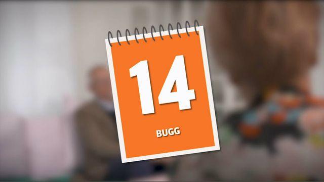 Programmera mera - uppdrag : Bugg