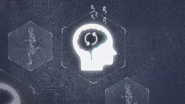 Orka plugga : Vad händer i hjärnan när du tränar