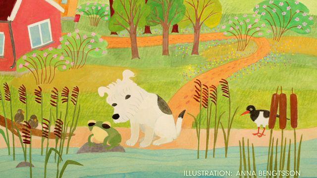 Godnattsagor - arabiska : Hunden som blev arg