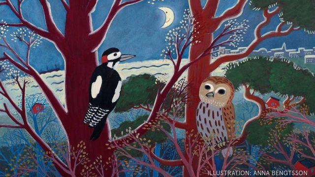 Godnattsagor - nordsamiska : Hackspetten och Ugglan