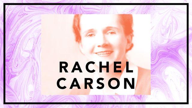 Bildningsbyrån - tänka mot strömmen : Rachel Carson - när fåglarna tystnar