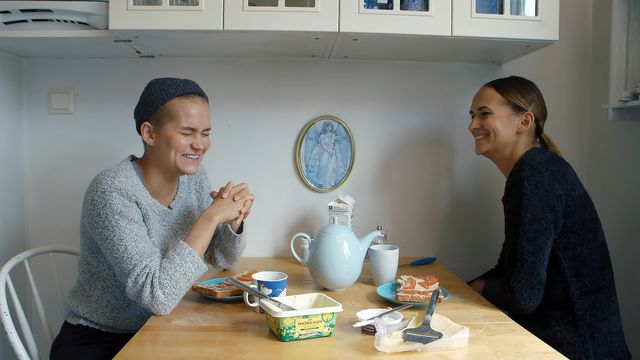Lagom mycket finsk - teckenspråkstolkat : Arvet